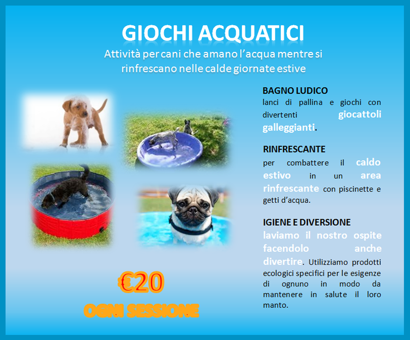 little dog, nerviano, attivita acquatiche