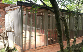 Gallery image - Little Dog Boarding Kennels